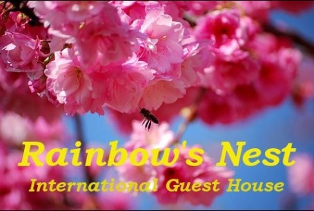 Rainbows Nest Guest House Dali Yunnan China
